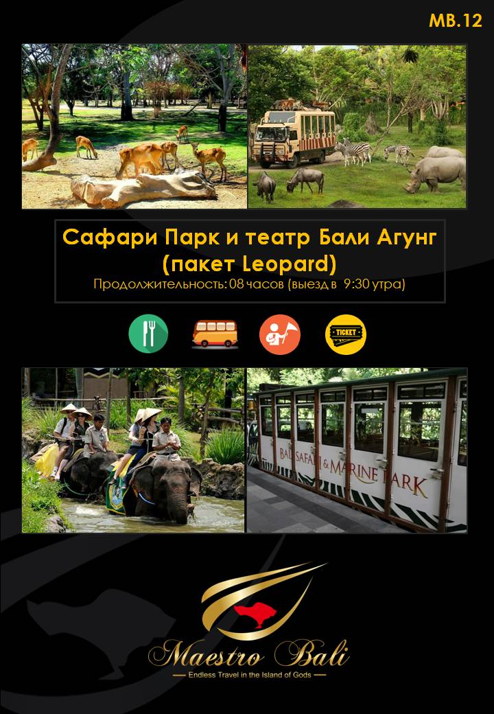 Leopard Package & Bali Safari Marine Park
